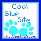 Cody's Cool Site Award